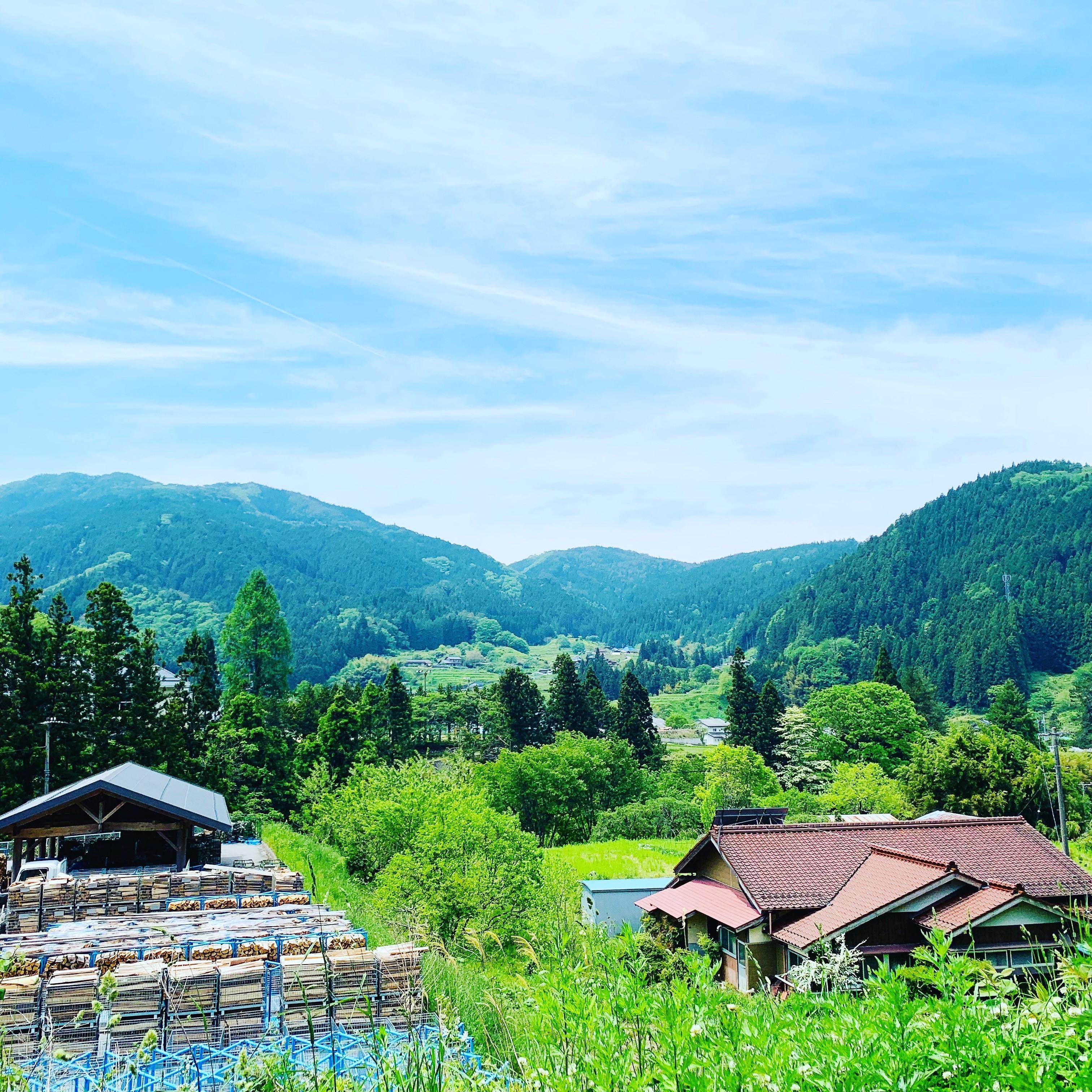 根羽村のまちなかの風景。