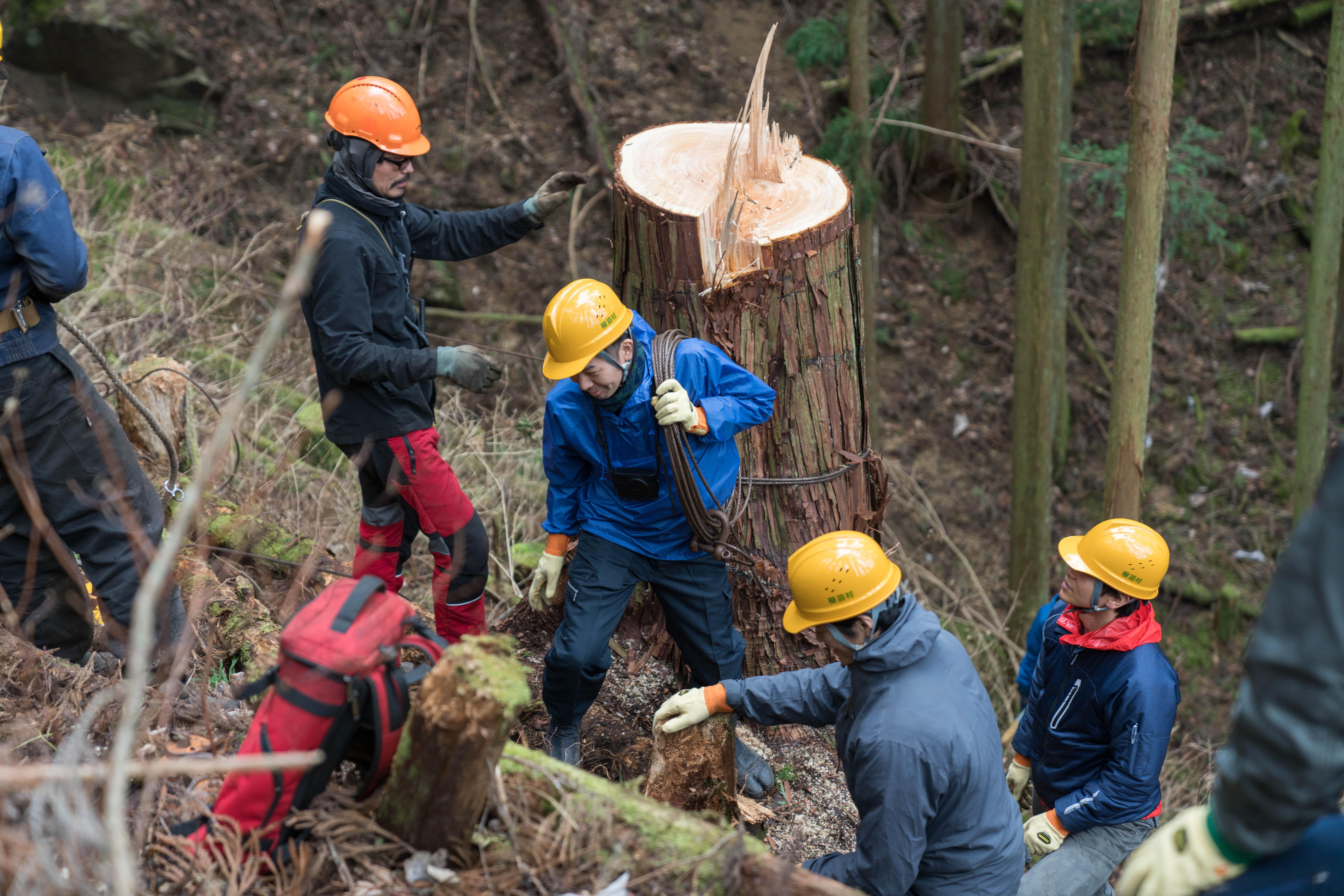 2日目には、木を伐採した後の撤収作業をお手伝い。急傾斜の山をのぼり、泥だらけになった参加者からは、「嘘がないことが伝わってきた」「作業だけではなくて、林業家という生き方も少し見えた」などの感想も。