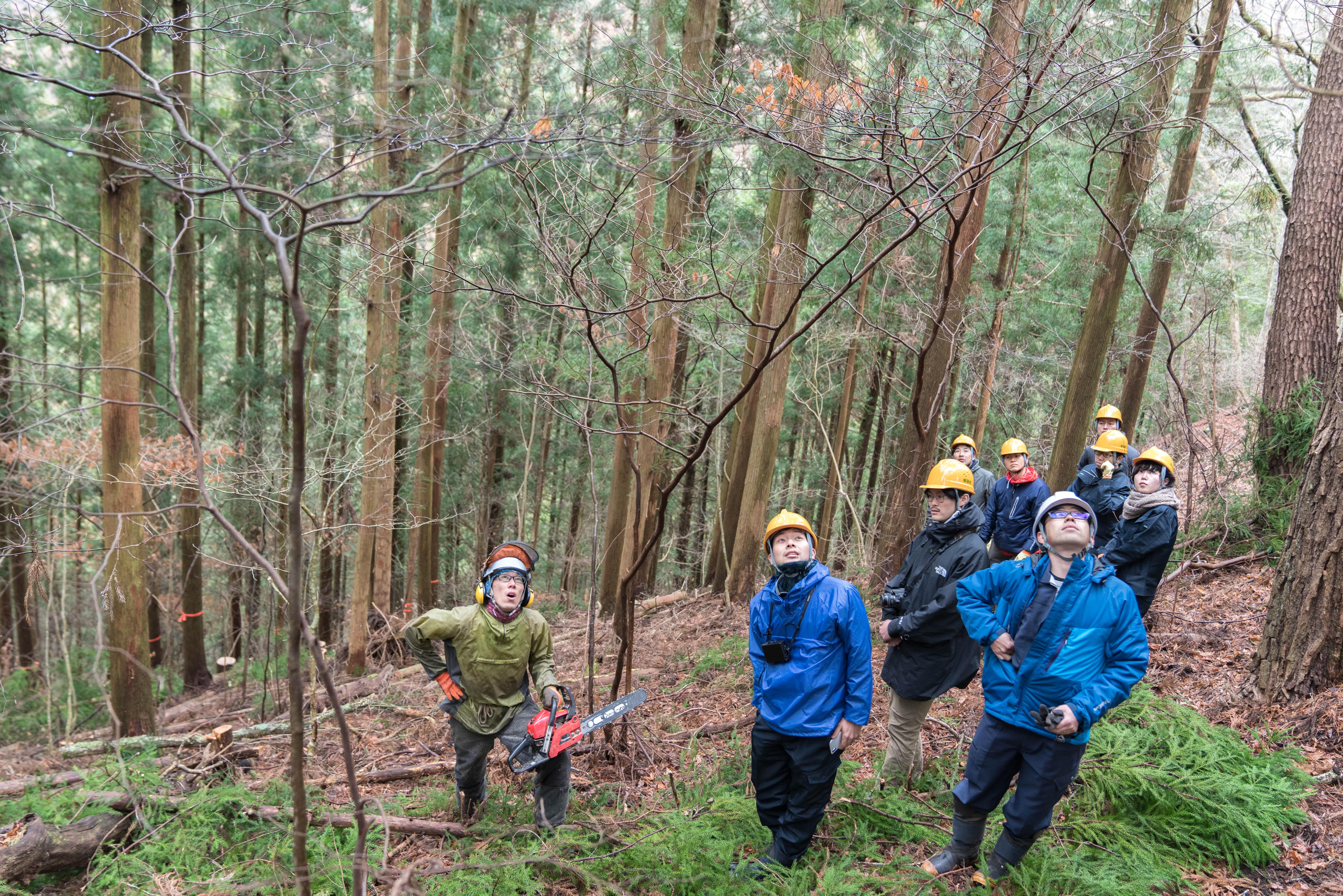 林業、それは嘘のない生き方。長野県・根羽村の林業にみる、日本の中山間地域の進むべき未来像